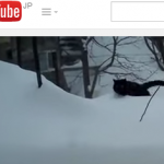 雪を完全無視して進軍するネコ
